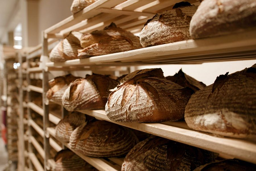 Dive into an enlightening journey towards the world of bread and its production today